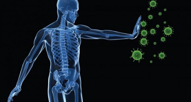 Ayurveda Analysis of Immunity