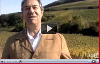 The Baron of Wine - Yves de Boiresdon in Vineyard