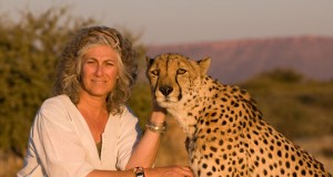 A Book Review on Dr. Laurie Marker's A Future for Cheetahs
