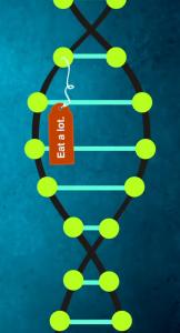 Epigenetic_Tags1